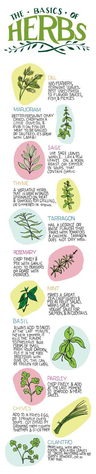 Herbs-01